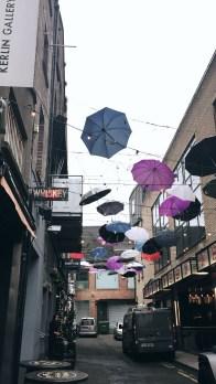 Zozimus Bar, Dublin