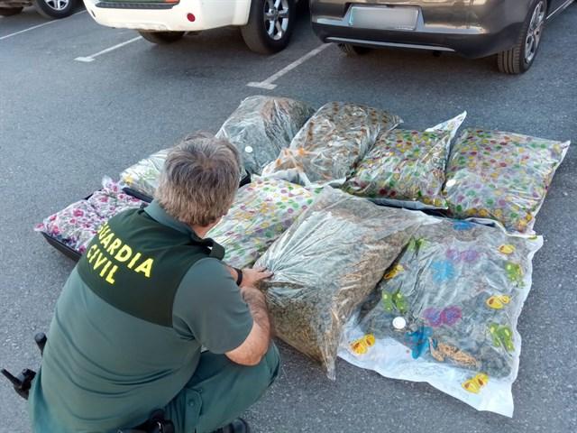 Torrevieja resident arrested on drugs run