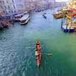 regata de barcas gran canal