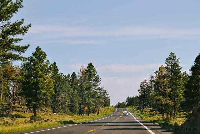 de camino a acceso sur Gran Cañon