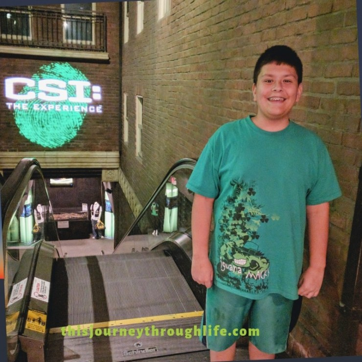 What can you do in Las Vegas with kids? Find out right here! Kid-friendly activities. CSI Experience