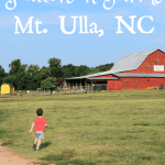 Patterson Farms – Mt. Ulla, NC