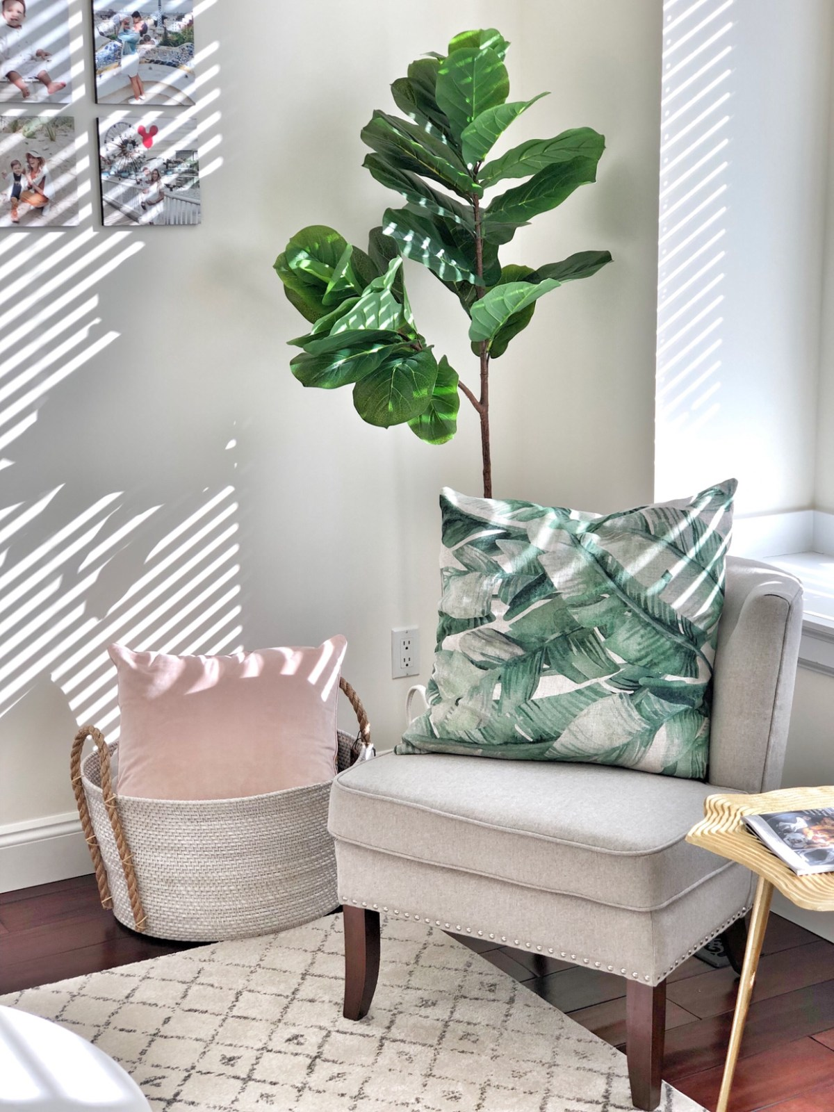 fiddle leaf fig - cozy office