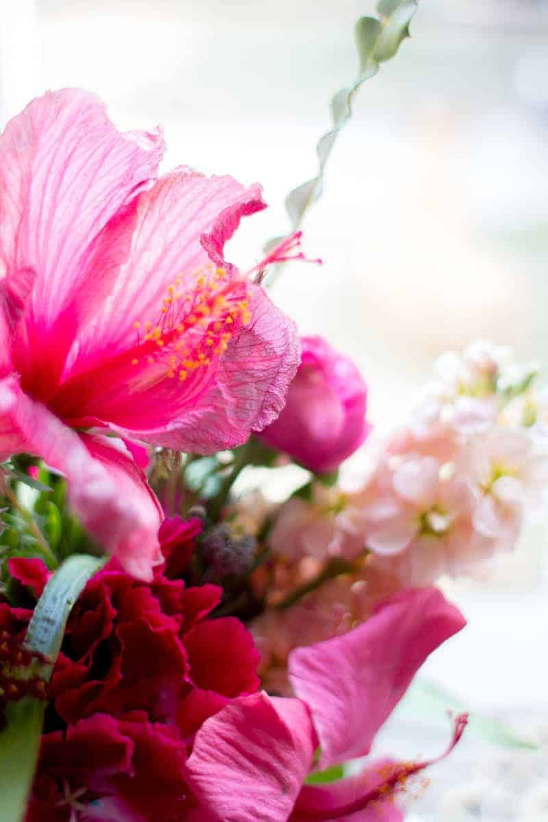 5 Ways To Indulge With Hibiscus by @vigorandsage and @beardandbonnet on www.beardandbonnet.com