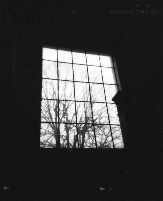 belmont-window