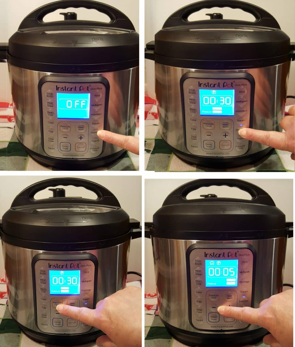 Sterilize your Instant Pot DUO Plus
