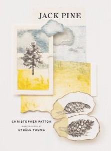 jack-pine-picture-book