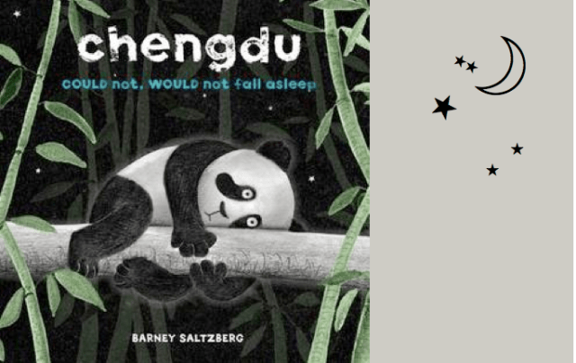 chengdu_panda_book
