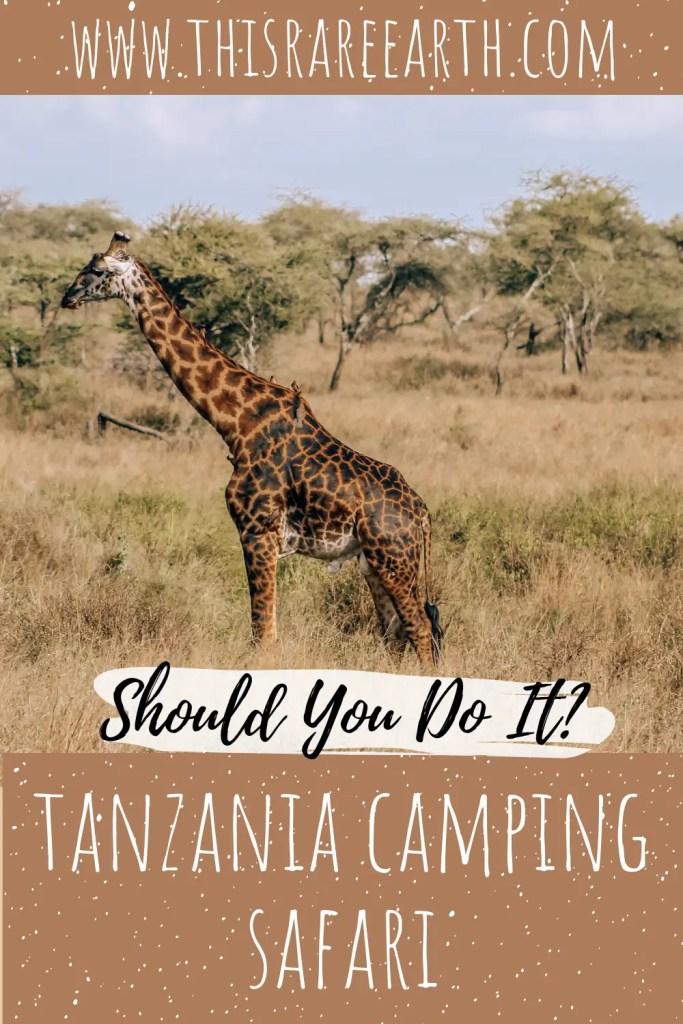 A Tanzania Camping Safari: Should you do it?