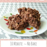 10 Minute, No Bake, Chocolate Coconut Oatmeal Clusters