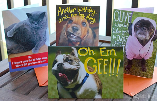 Affordable Funny Pets Greeting Cards from Hallmark, #FunnyPetCards #shop