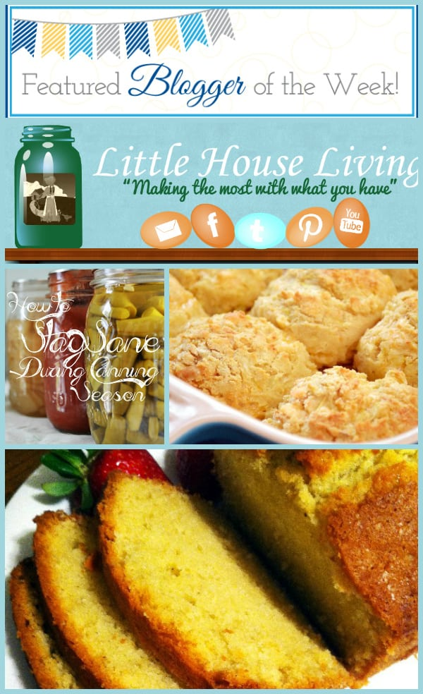 LittleHouseLivingFeature