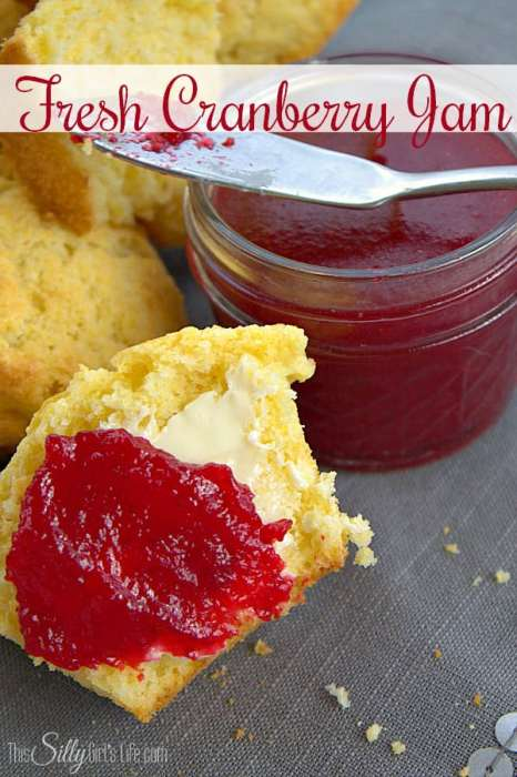 Fresh Cranberry Jam, only 3 ingredients and ready in 14 minutes or less, sweet, tart and oh so delicious! - ThisSillyGirlsLife.com