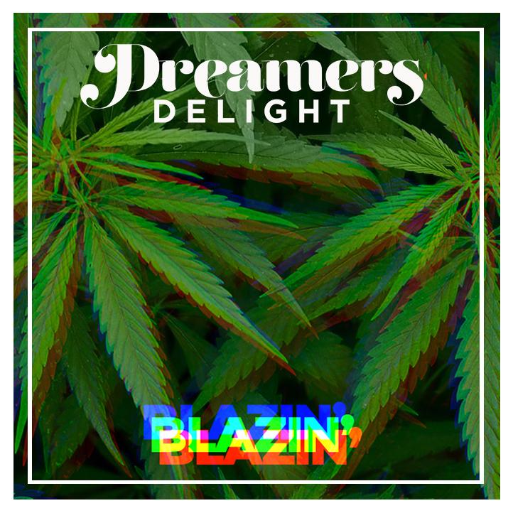 Dreamers Delight Blazin