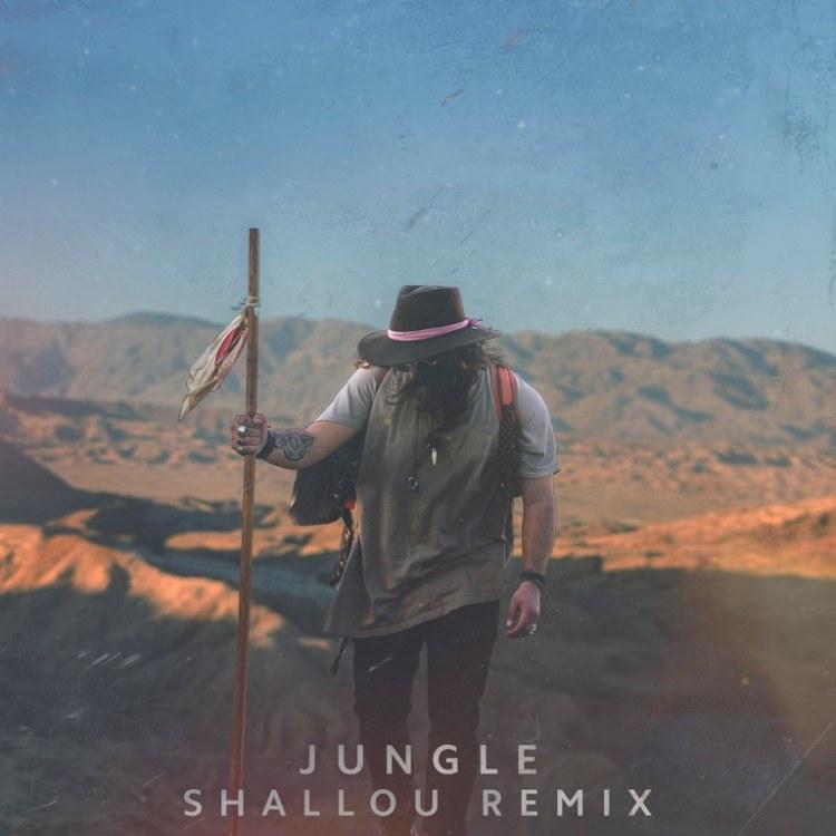 Shallou Jungle Remix Artwork