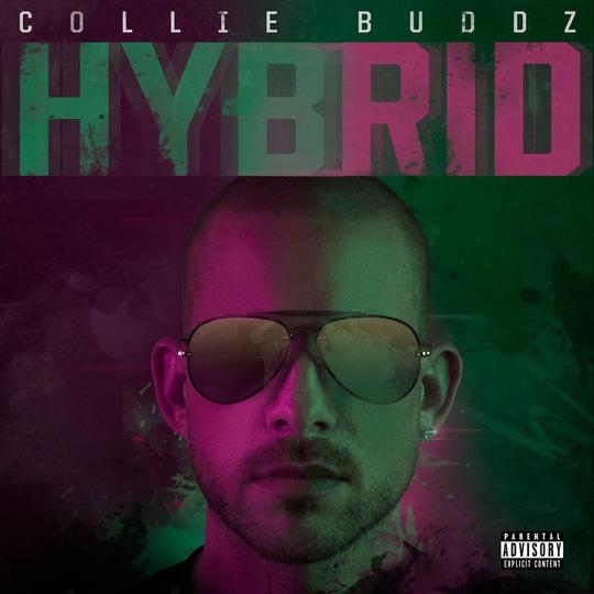 Collie Buddz Effortlessly Blends Reggae & Hip-Hop On New