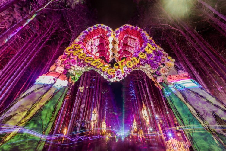 electric forest extension