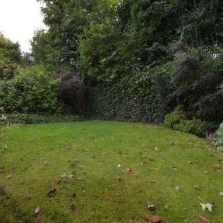 Garden listing pic 4