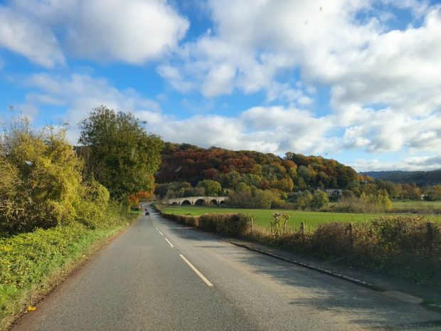 Bongo drive to the Forest of Dean