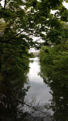 Lake view at Parc de la Tête d'Or