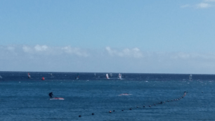 Costa Teguise windsurfers