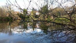 Moseley Park 6