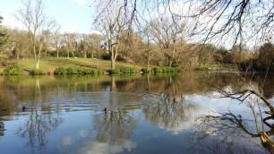 Moseley Park 8