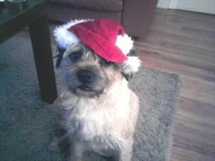 Rufus Santa hat