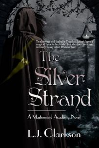 thesilverstrand