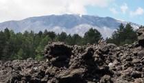 Lava, trees, snow on Mt Etna