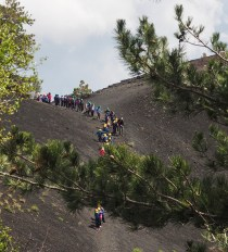 A group of school children climbing nearby