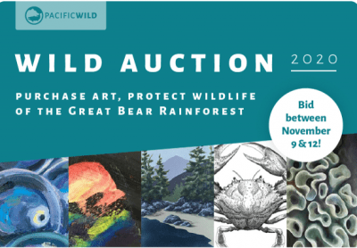 Wild Auction Starts Today!