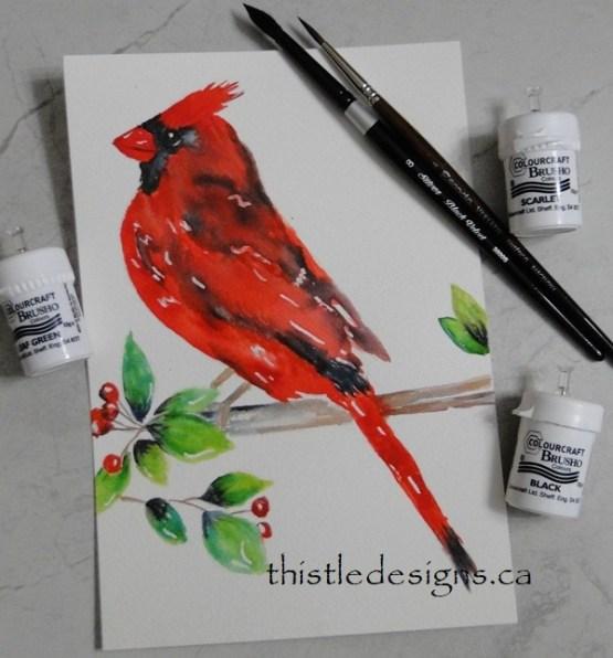Cardinal with Brusho