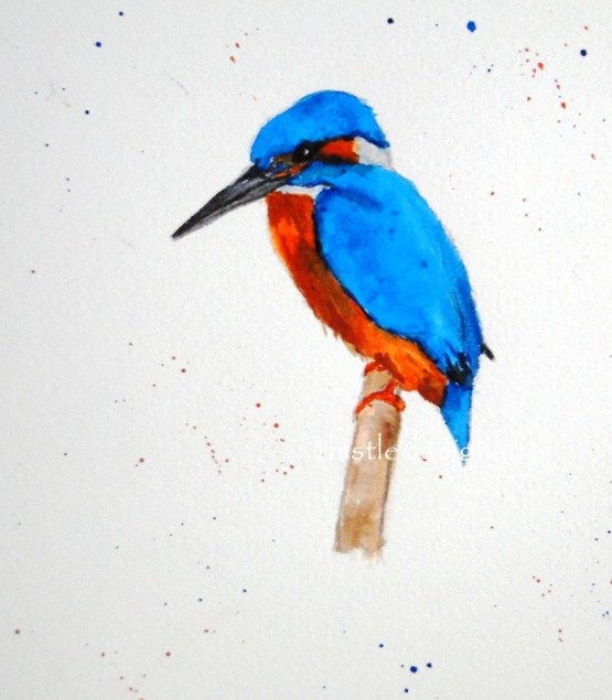 Watercolour Kingfisher