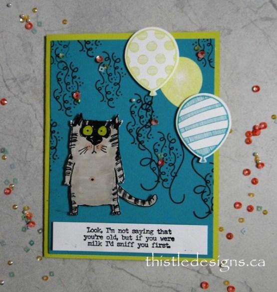 Snarky Cats Birthday Card