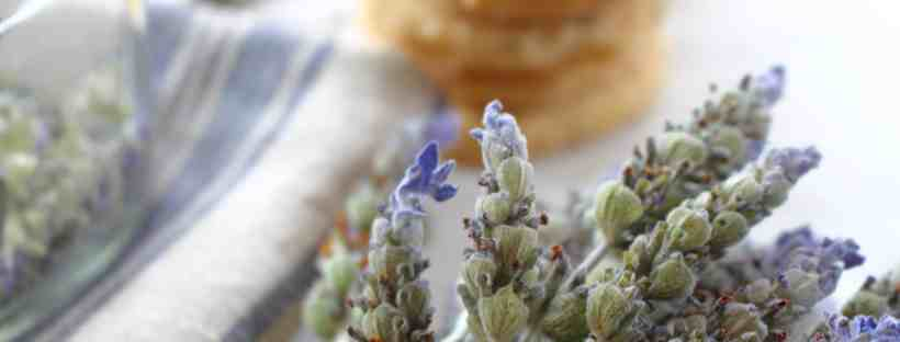 Lavender Shortbread Cookies - Thistle Key Lane