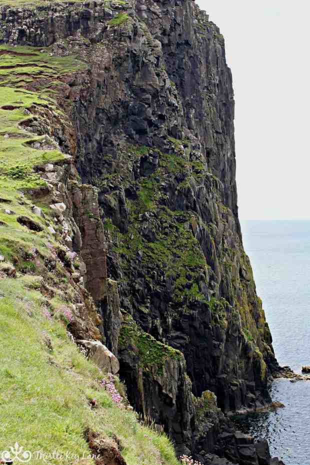 North facing cliff at Neist Point