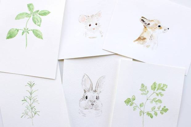 Watercolor Collection On Society6