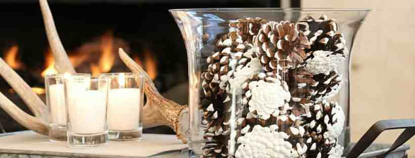 Winter vignette on the coffee table.