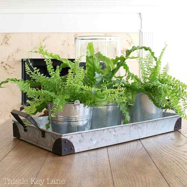 Everyday decorating with plants.