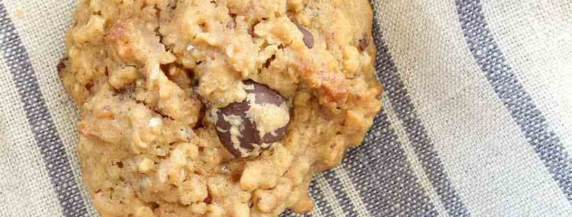 Very yummy peanut butter chocolate chip oatmeal cookie!