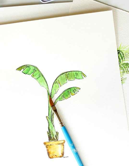 Banana tree watercolor. Houseplant watercolors by Thistle Key Lane.