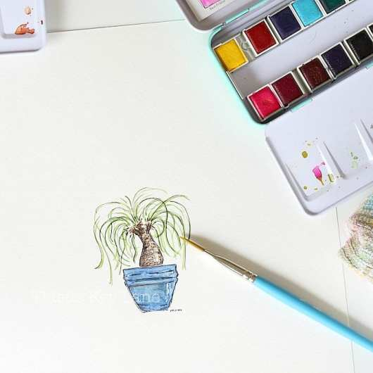 Pony tail plant watercolor.