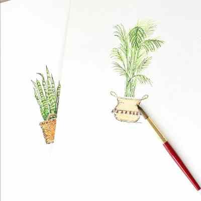 New Houseplant Watercolors