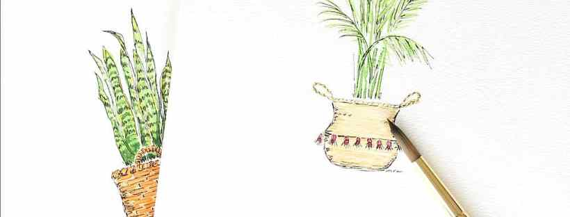 House plants watercolors are fun.