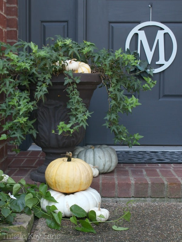 Front porch vignette with an urn, ivy, and pumpkins.
