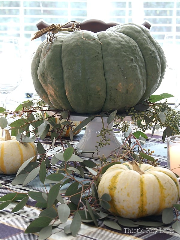 Green pumpkin centerpiece with bright background.