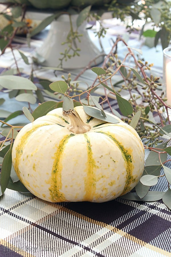 Stripped pumpkin with eucalyptus.
