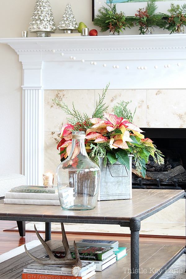 Poinsettia arrangement on a coffee table.