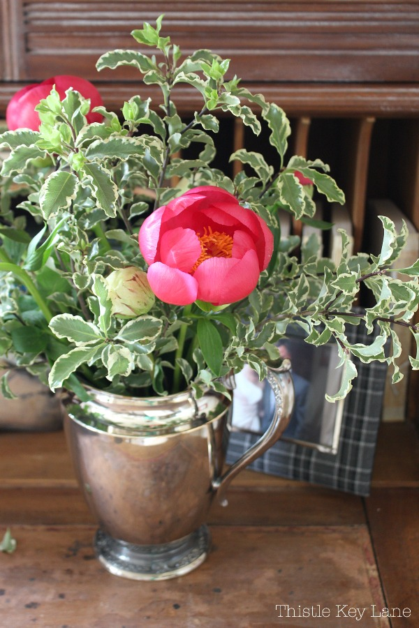 Peonies in a silver pitcher.
